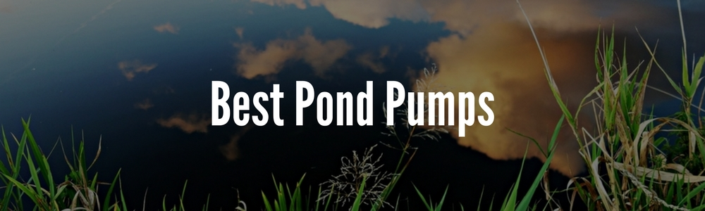 Best Pond Pumps