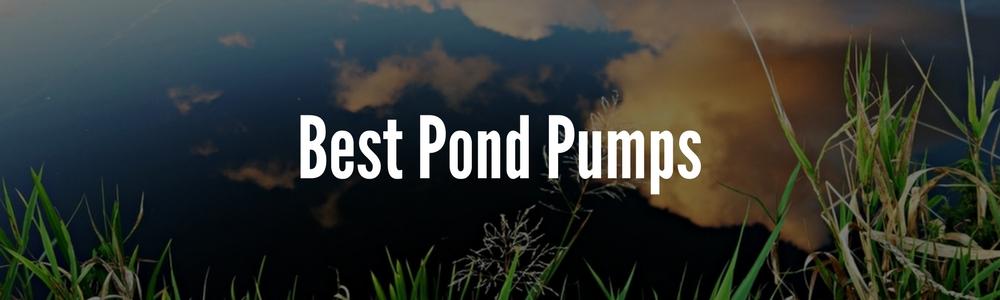 Best Pond Pumps The Top Options