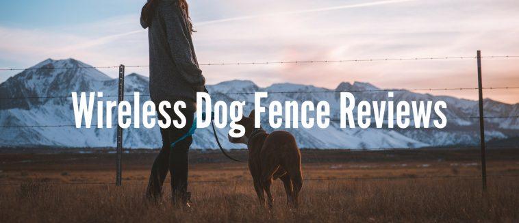 Wireless Dog Fence Reviews