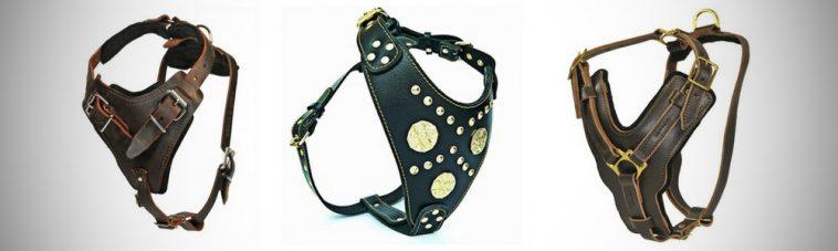 Unchewable Dog Harness