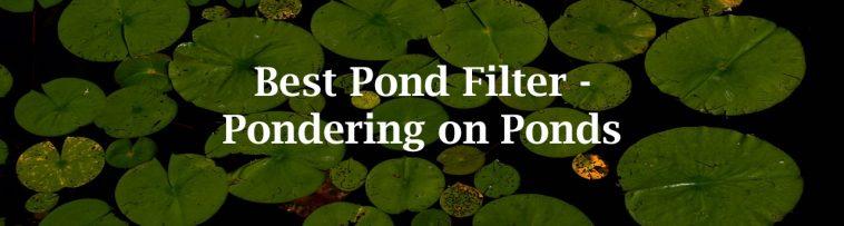 best pond filter