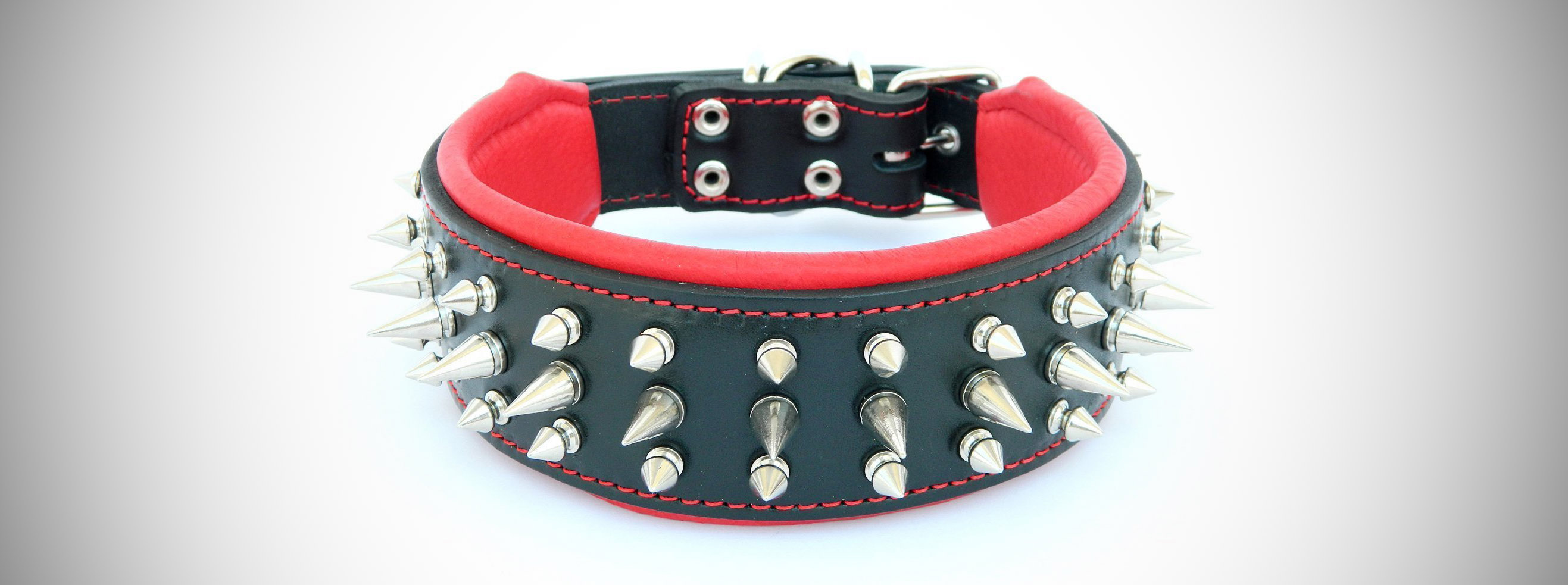 Unchewable Dog Collar